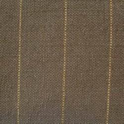 Passat-bruin