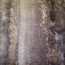 Latour charcoal
