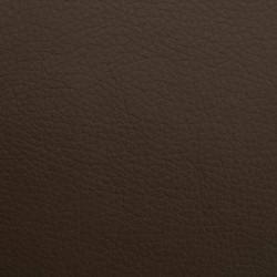 Atlas-bruin