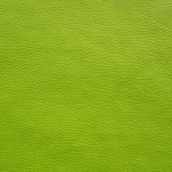 Atlas-groen