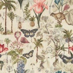 Botany Tropical