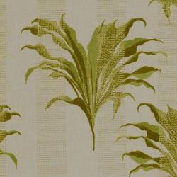 Palm Citron