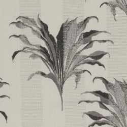 Palm Charcoal